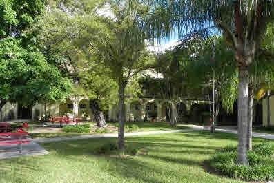 Double programme français et américain à Coconut Grove 4