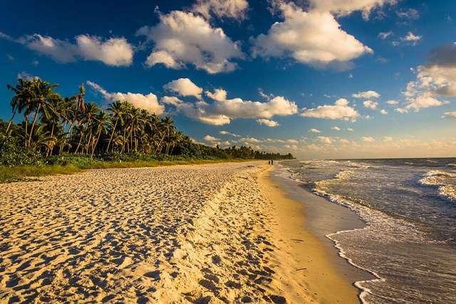 Le top 6 des plus belles plages de Floride 3