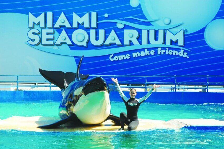 Bon plan : visitez Miami avec la Miami Go Card 4