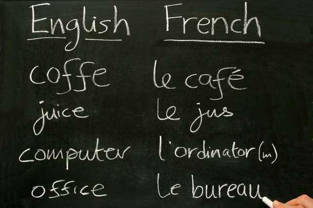 Le combat de la FIPA : maintenir le programme français ! 2