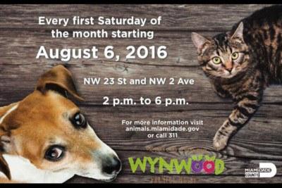 adopt pet farmer market wynwood
